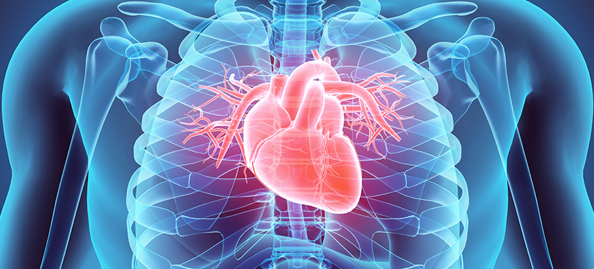 Reverse the aging of your heart