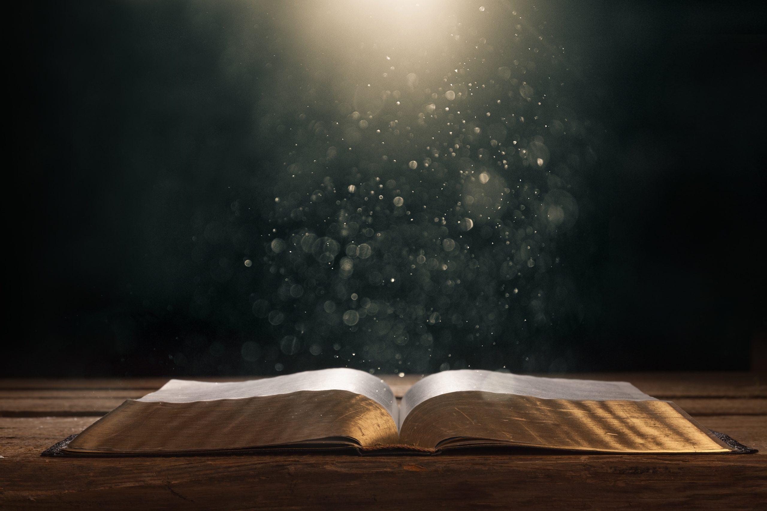 Mensaje para 365 días - Los deseos De Dios