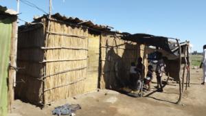 los mozambicanos