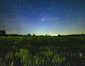 Poseedor de los Cielos y de la Tierra: La promesa hecha para Abraham puede cumplirse en su vida