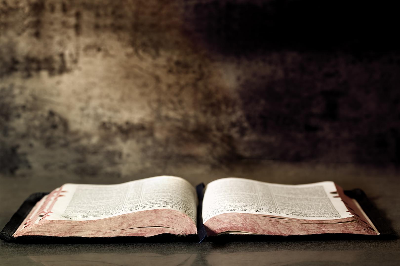 Lea la Biblia en un año : 216º día15 min read