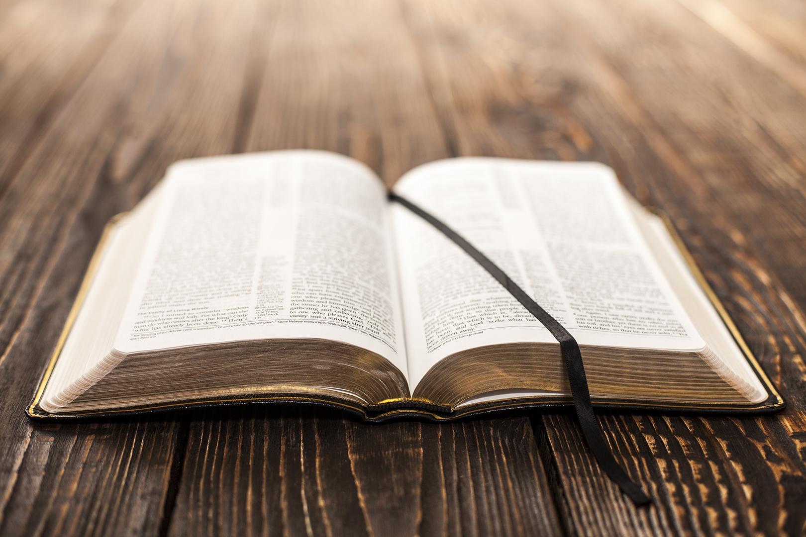 Lea la Biblia en un año : 222º día15 min read