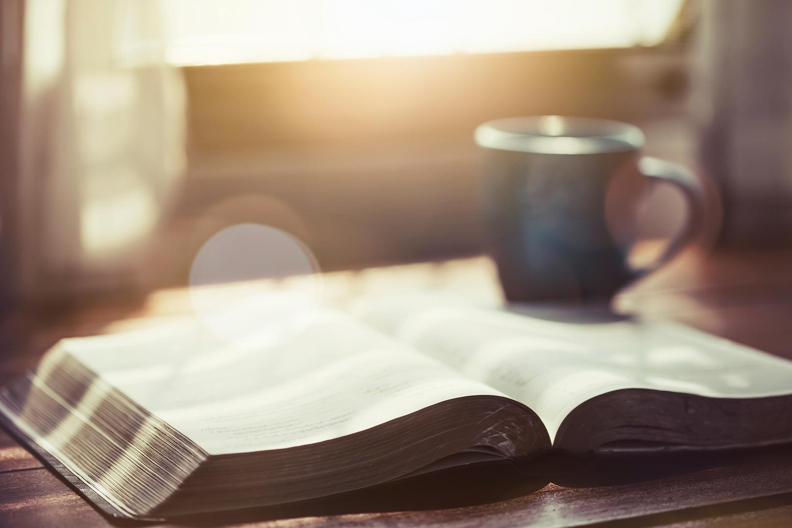 Lea la Biblia en un año : 223º día11 min read