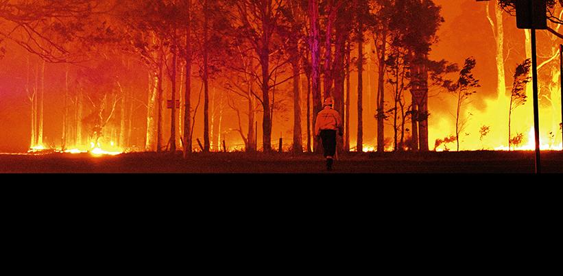 Universal auxilia vítimas de incêndio na Austrália