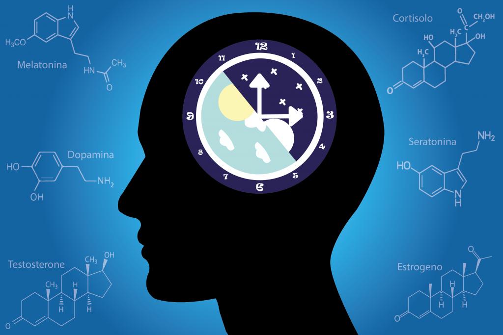 Cronobiologia: acerte os ponteiros do seu relógio biológico