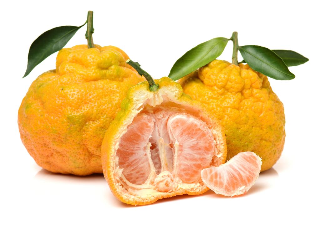 Fruta feia não é sinônimo de ruim